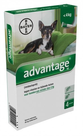 Bayer Advantage Hond 4 Pipetten 40 Tot 4 Kg 4 Pip